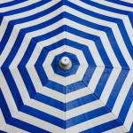 Na czym polega działalność funduszy parasolowych?